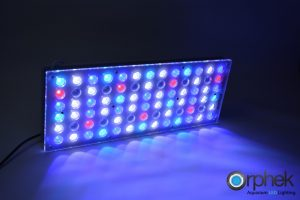 Orphek-Atlantik-vXNUMX-XNUMX-LED-Aquarium-Light-ALL-channel XNUMX+XNUMX+XNUMX