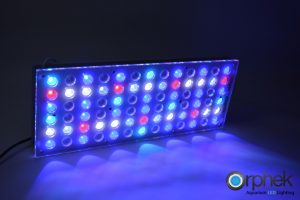 Orphek-Atlantik-v2-1-LED-Aquarium-Light-ALL-channel 2+3+4