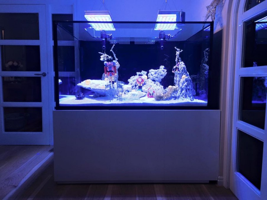 Orphek--aquarium LED-licht-UK