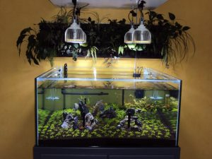 PR72 LED plantait Aquarium Pendentifs