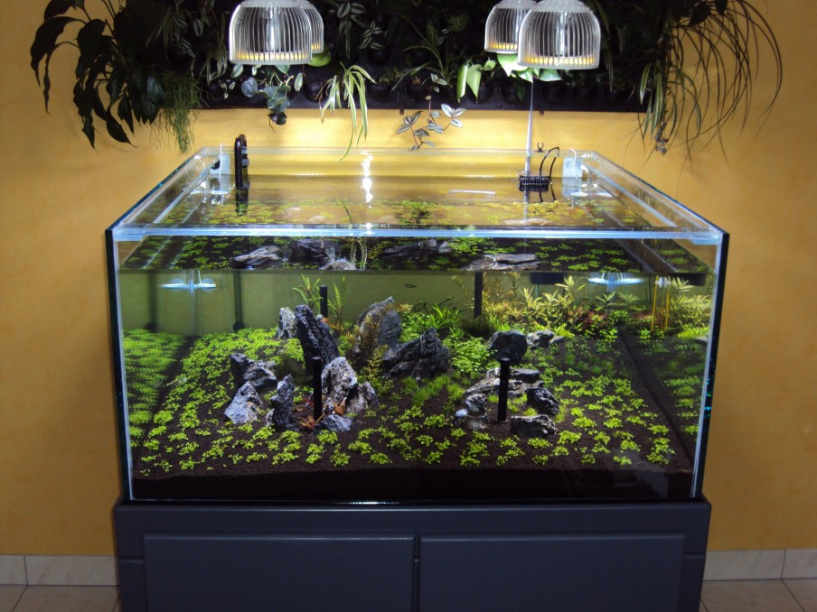 PR72 LED Planterade Aquarium ljus