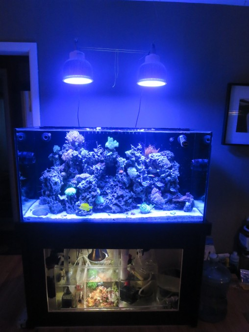 Orphek Atlantik Pendant reef aquarium LED lighting