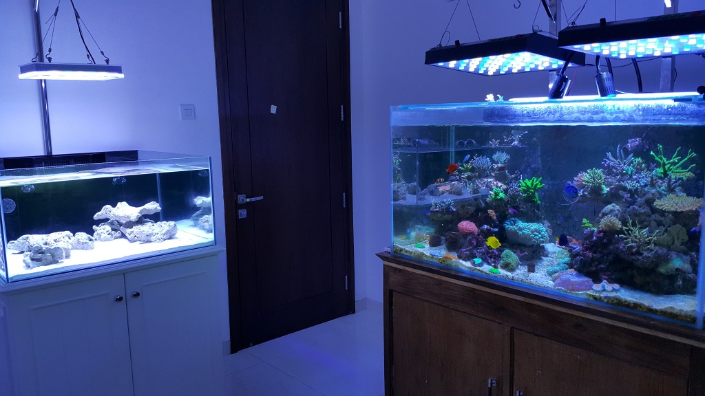Atlantik-compact-aquarium-LED-lighting