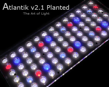 Orphek-Atlantik-v2.1-Planted-Aquarium-LED-lighting