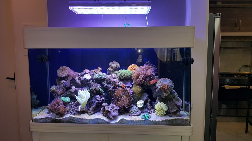 Teheran LED-Aquarium-Light- orphek
