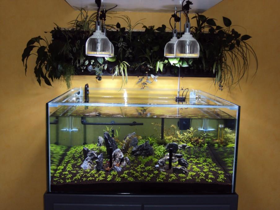 LED orphek-PR72-zbiornik-sadzić