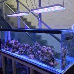 orphek_Reef_Tank_LED_light
