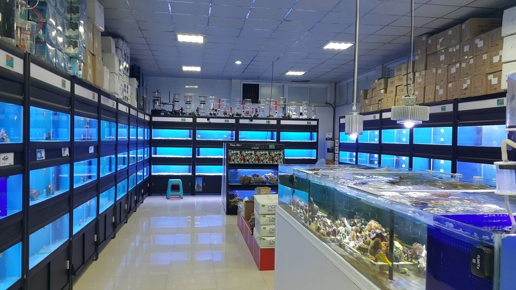 Iran-Aquarium -Orphek-LED -and- Skimmers