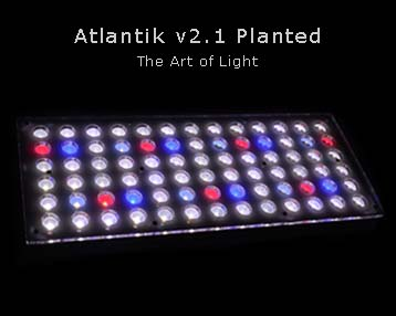 Orphek-Atlantik-v2-1 obsadzone-akwarium-LED-Lighting