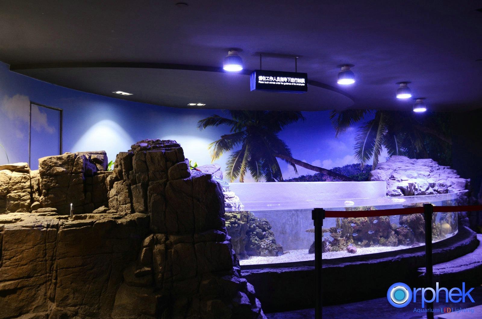 More Photos From Chengdu Public Aquarium Light by Orphek Atlantik