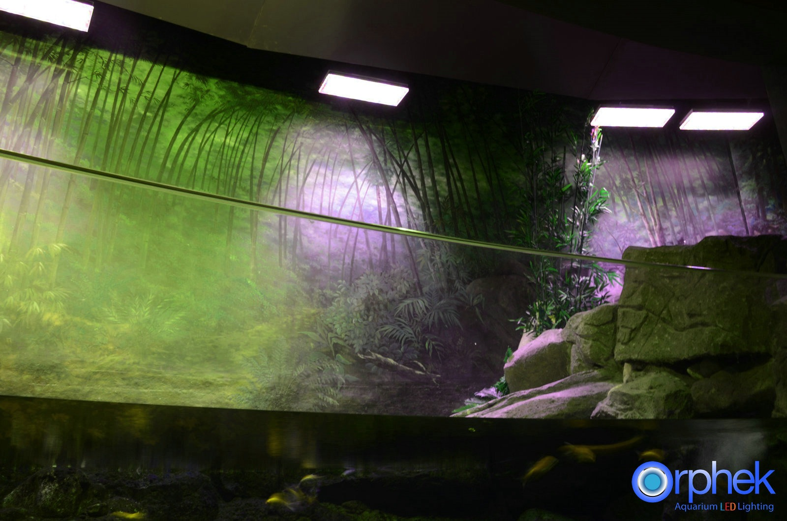 Atlantik LED lighting public aquarium