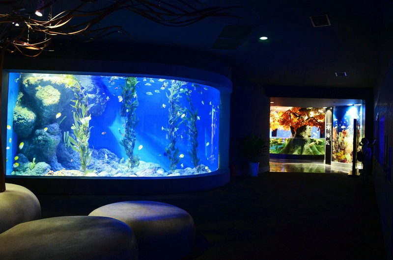 chengdu-public-aquarium-LED-lighting-cold -seas -zone-1