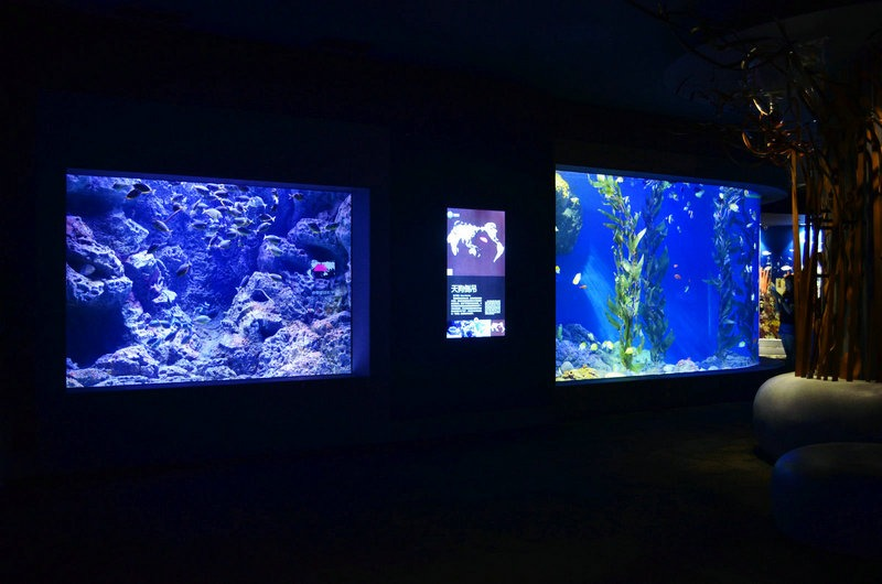 orphek-public-aquarium-LED-light-cold -seas