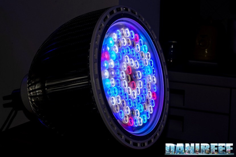 led-Orphek-Atlantik-P300-public-aquarium-light