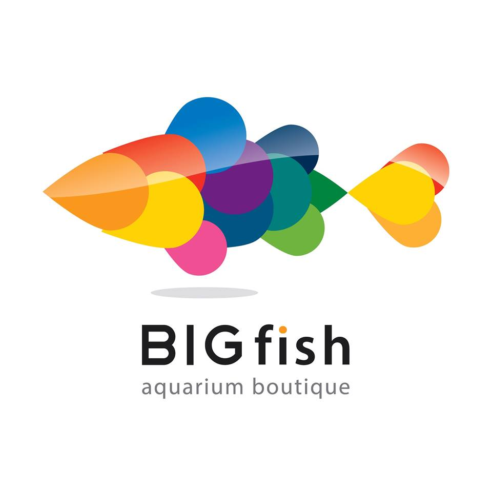 Big Fish Aquarium Бутік-логотип