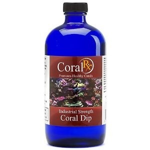 Coral celup