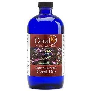 Koral-dip