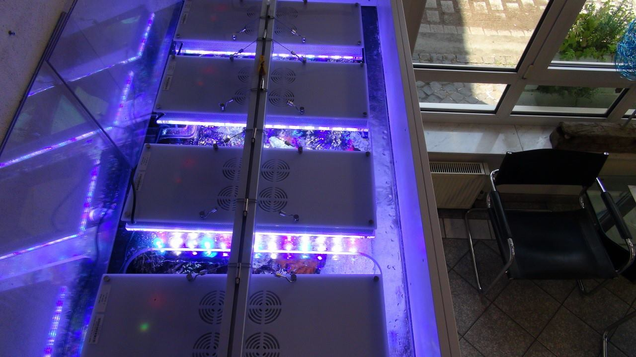aquarium_LED_lighting
