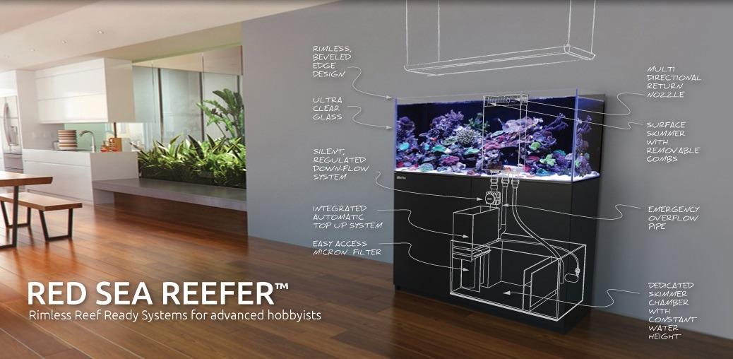 James New Tank Build Orphek Sales Consultant Aquarium Led