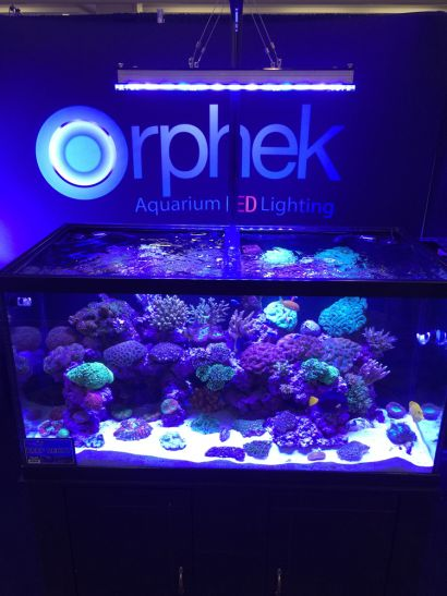 treffen sie die neue orphek atlantik v3 led leuchte aquarium led beleuchtung orphek. Black Bedroom Furniture Sets. Home Design Ideas