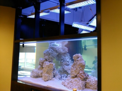 1500-gallon-reef-aquarium-LED-lighting