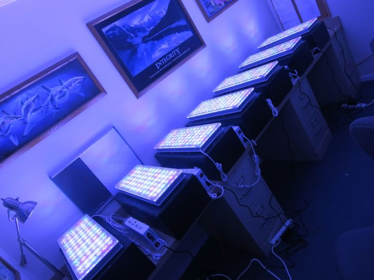 atlantik-reef-LED-light-system