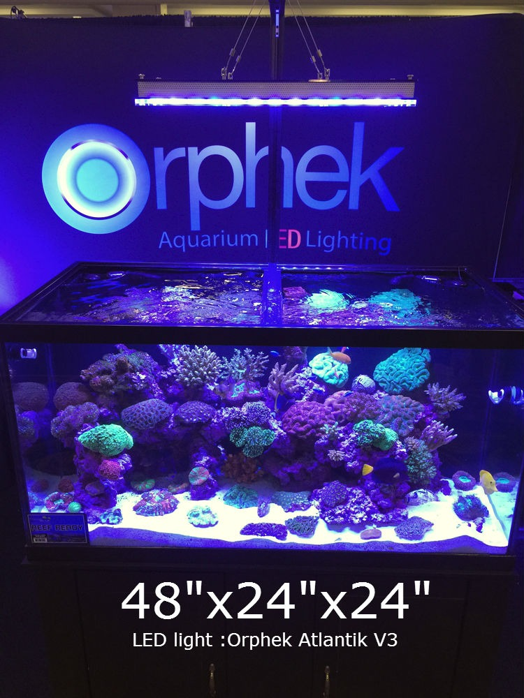 atlantik v3 wifi led reef aquarium licht orphek aquarium. Black Bedroom Furniture Sets. Home Design Ideas