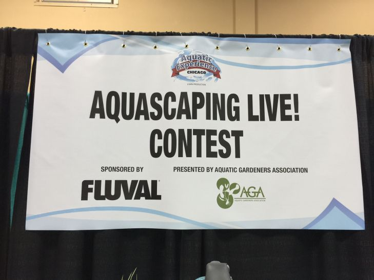 -aquascaping-contest (4)