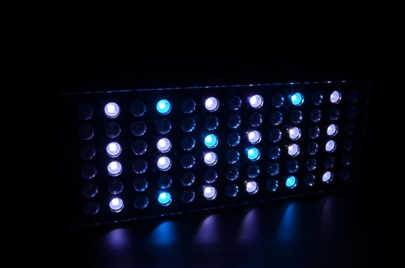 orphek-Atlantik-V3- channel 1-public-aquarium-LED-lighting-9604