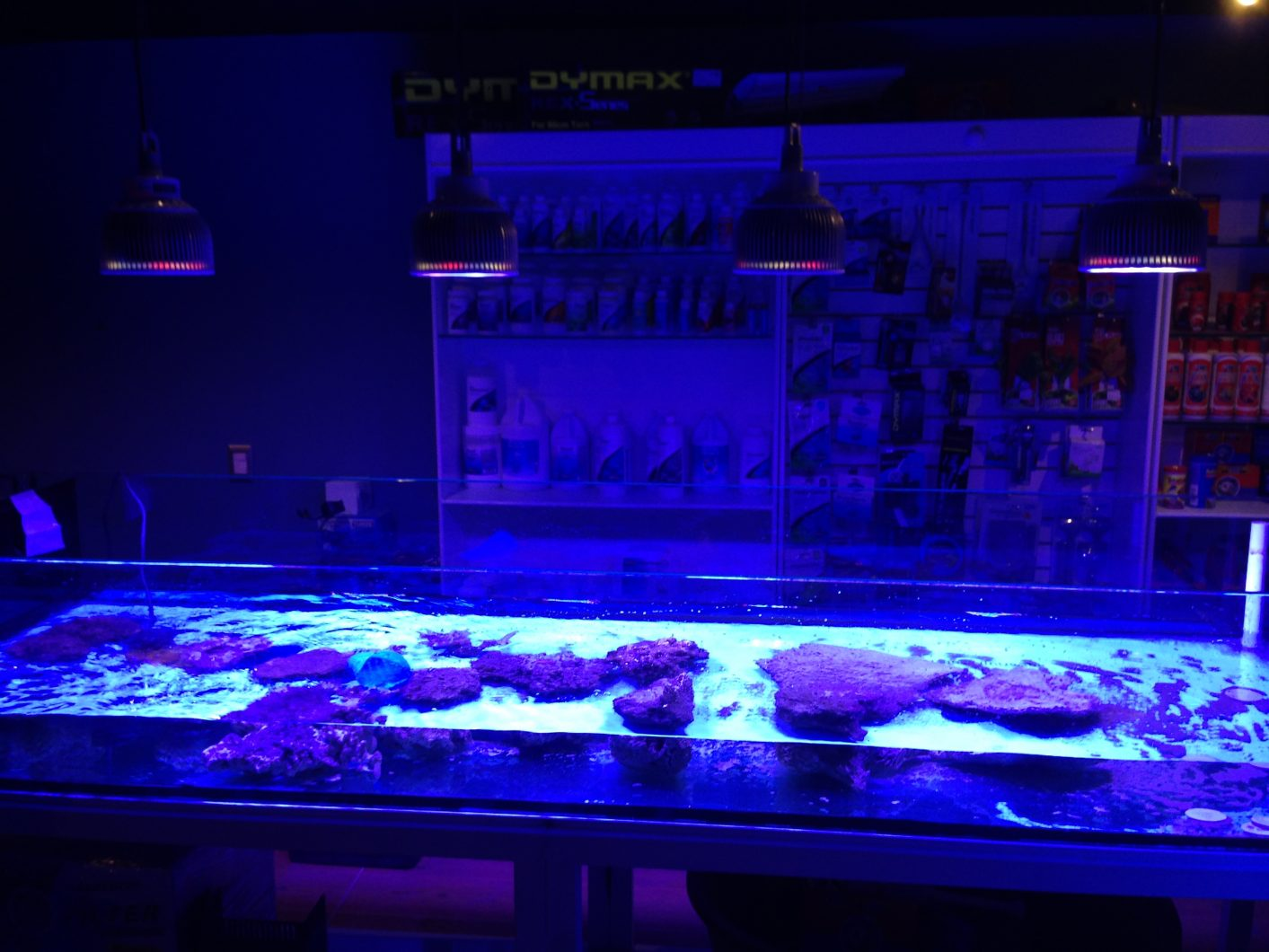 Led-acquario-Light-Messico