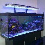 Reef-aquarium-LED-montage-bras