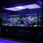 Best_reef_LED_Aquarium_light