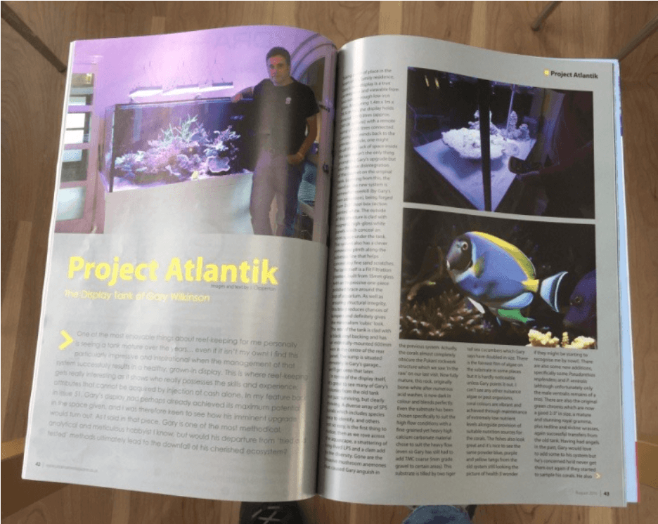 reef tank -project-atlantik