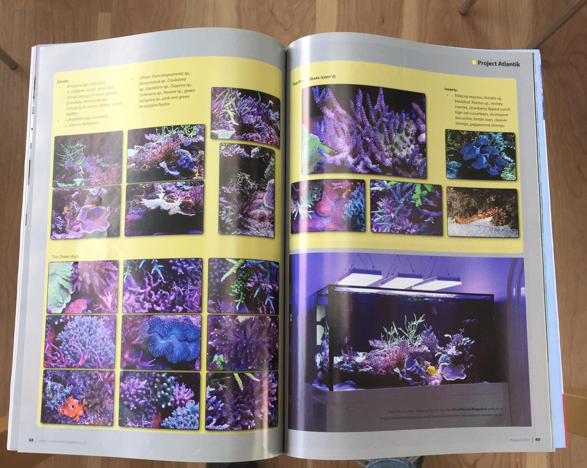 reef-tank-video-featured-uks-ultramarine-magazine