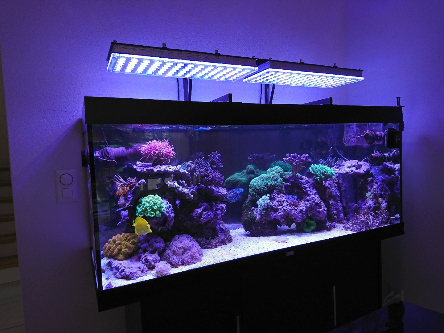 aquarium led licht orphek v3 reef montagearm teil ii aquarium led beleuchtung orphek. Black Bedroom Furniture Sets. Home Design Ideas