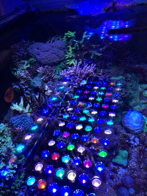 Atlantik_v4_reef_aquarium_led_lighting