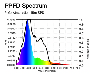 korallen Adsorptions-curve-PPFD