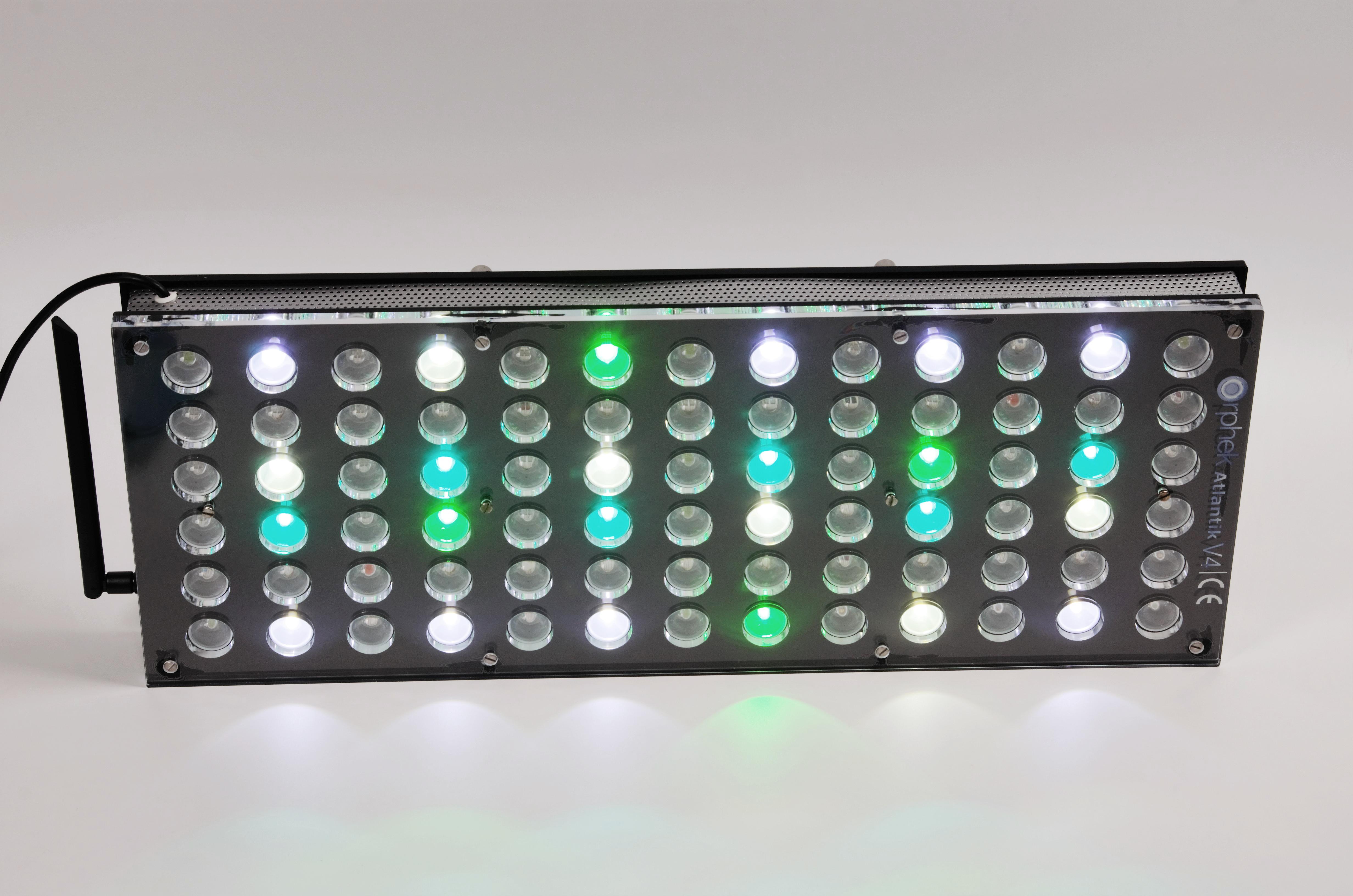 Orphek-Aquarium-LED-Lighting-Reef-Atlantik-V4-light-on-channel 1-DSC_4306