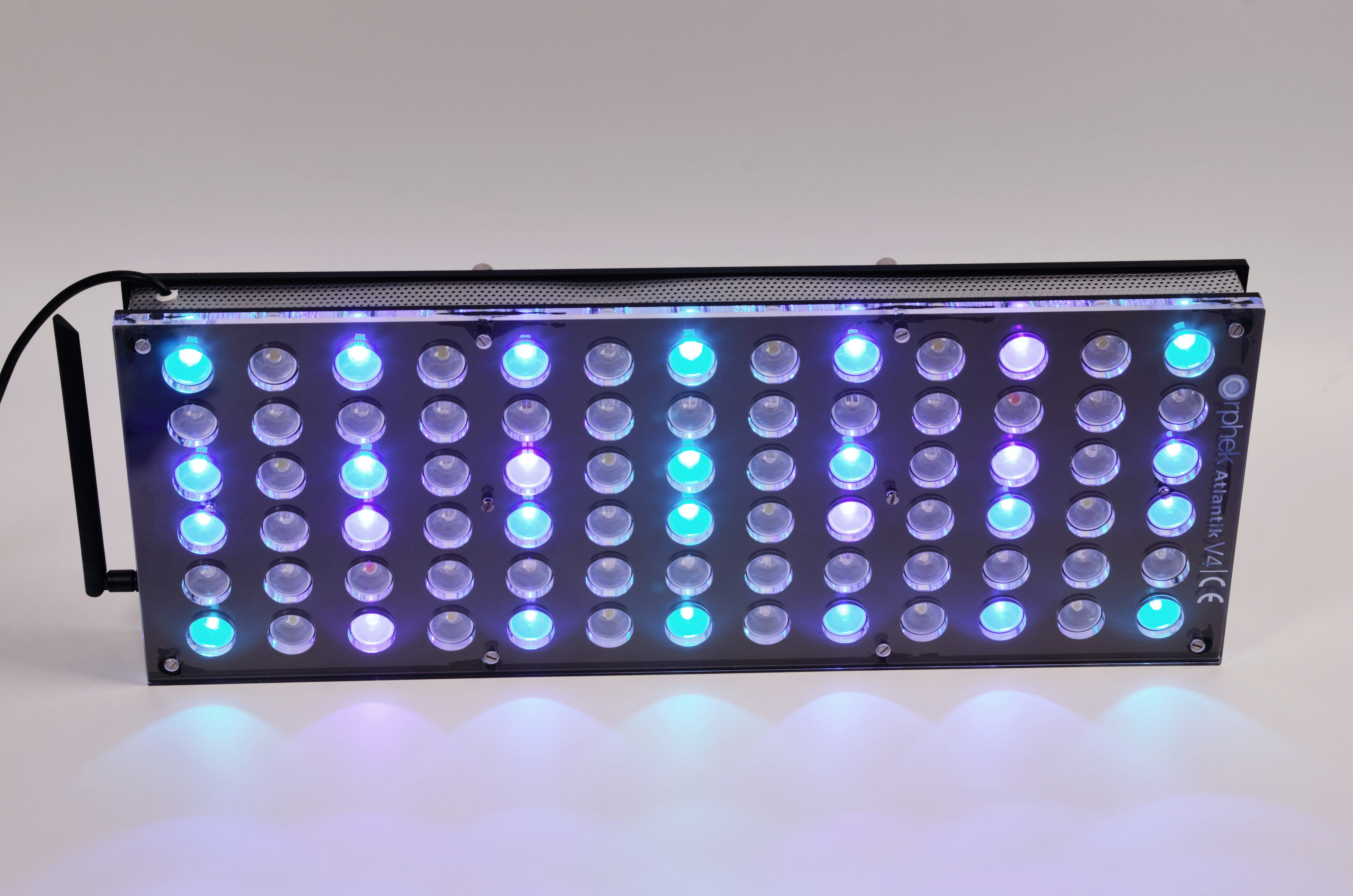 Orphek-Aquarium-LED-Lighting-Reef-Atlantik-V4-light-on-channel 2-DSC_4307