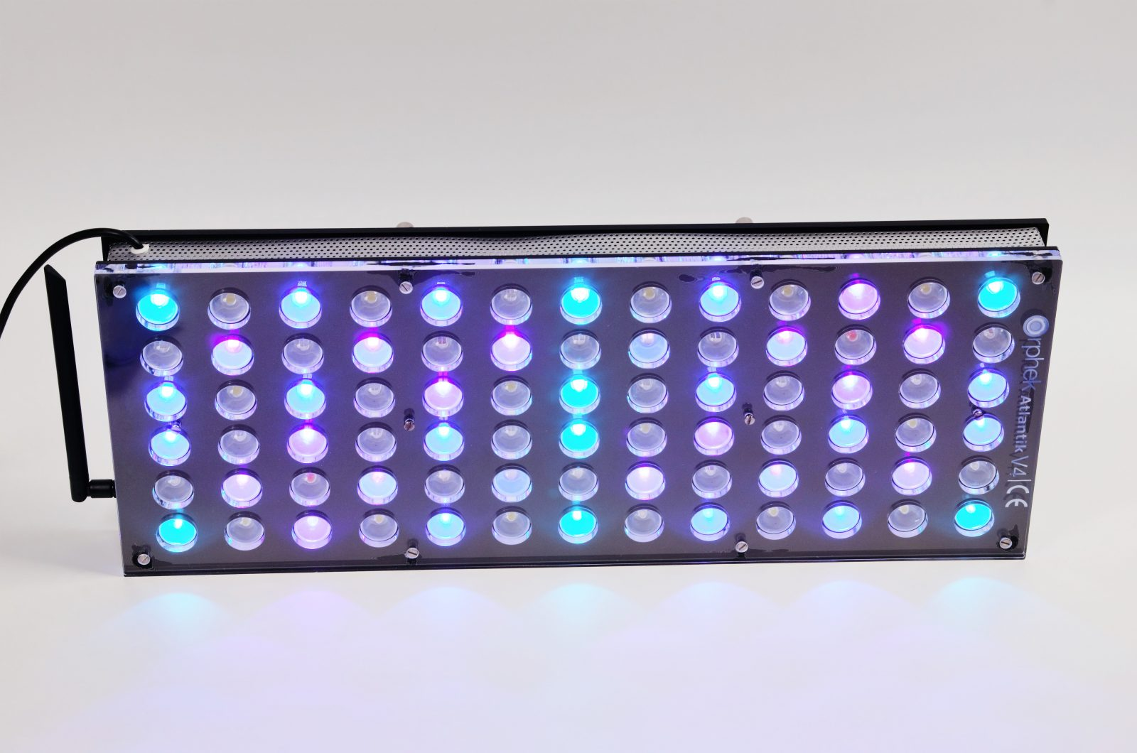 Orphek-Aquarium-LED-Lighting-Reef-Atlantik-V4-ljus på kanalen 2 + 3