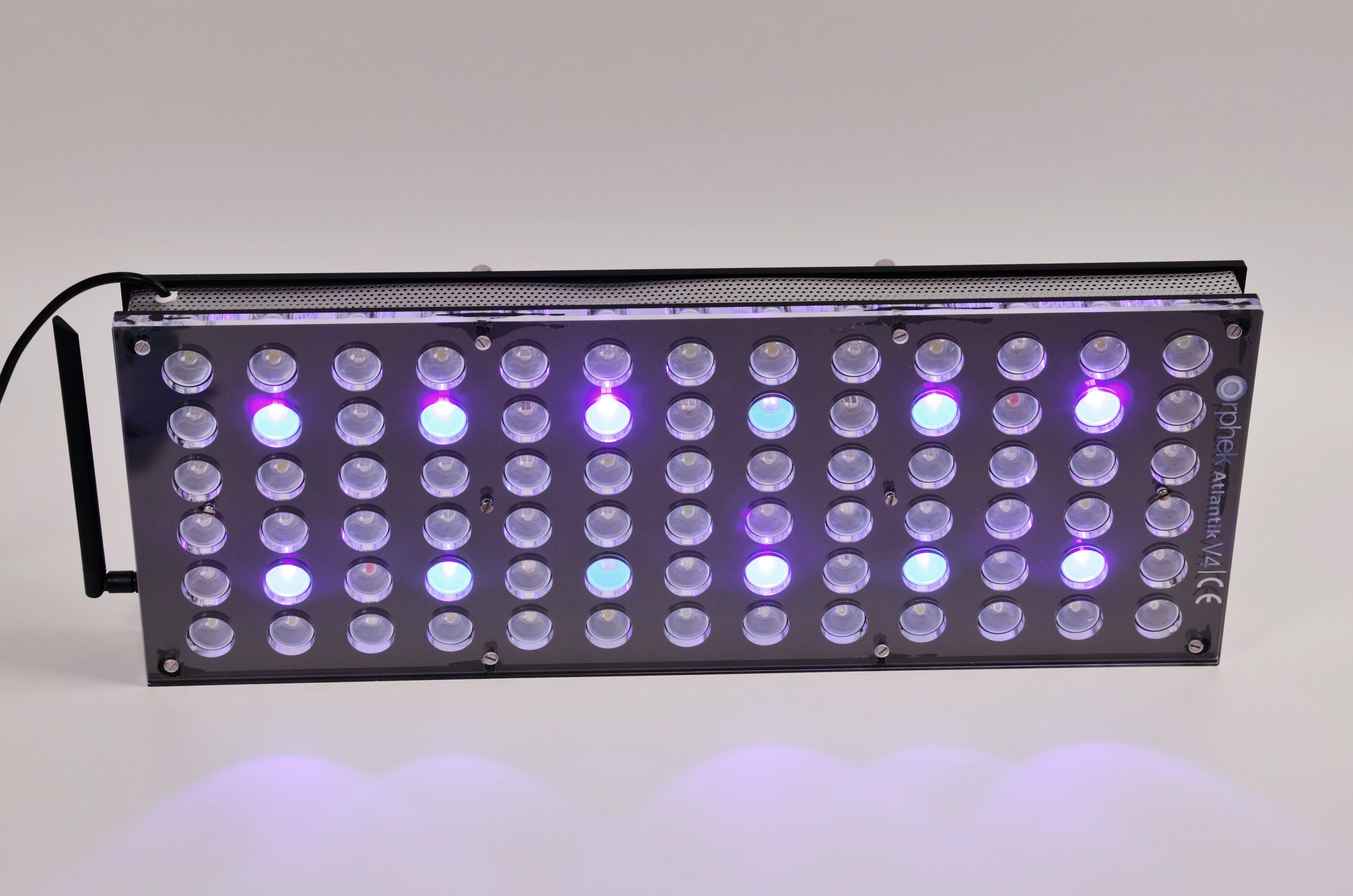 Orphek-Aquarium-LED-Lighting-Reef-Atlantik-V4-light-on-channel 3-DSC_4311