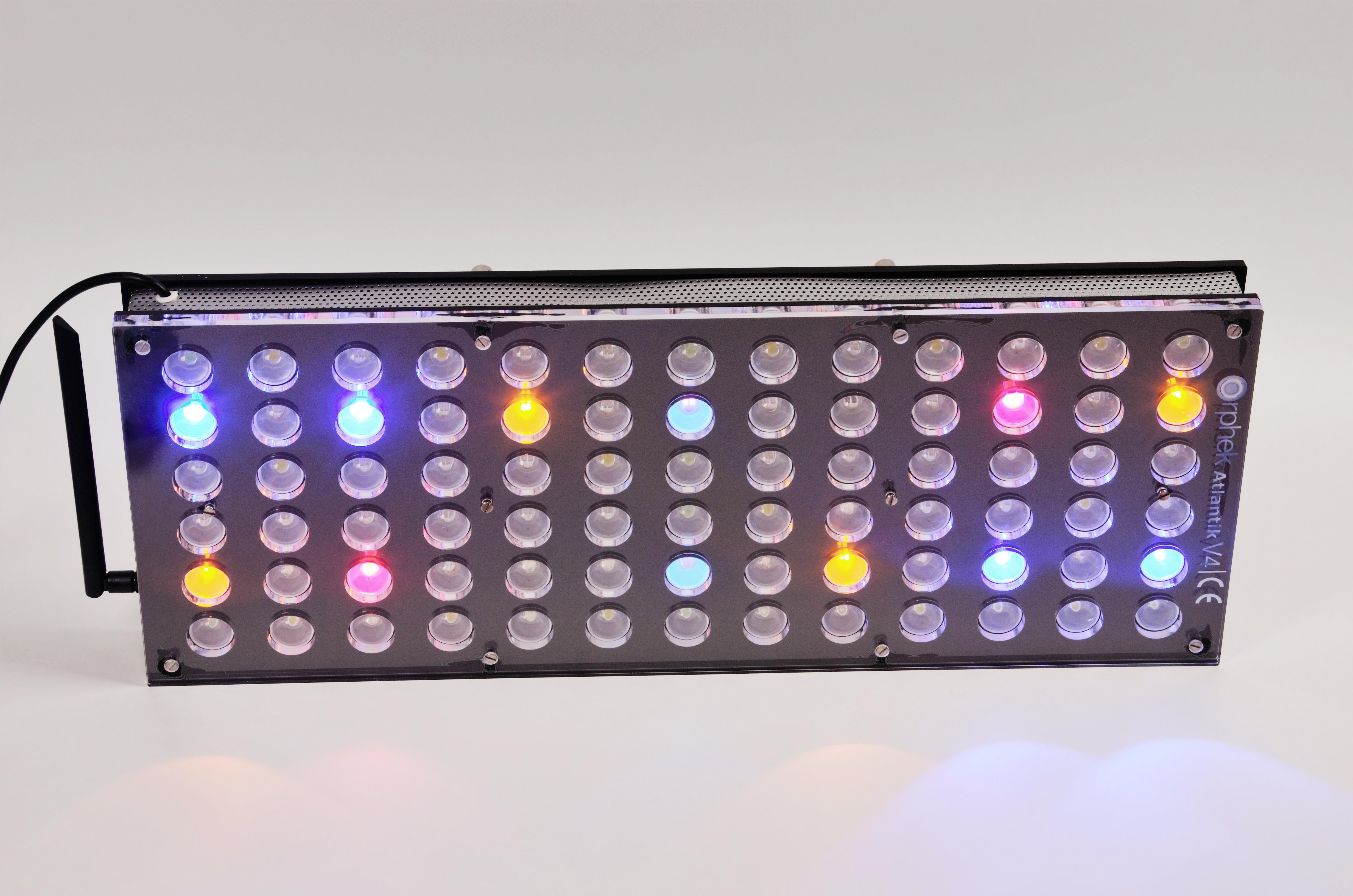 Orphek-Aquarium-LED-Lighting-Reef-Atlantik-V4-light-on-channel 4-DSC_4312