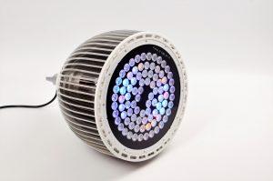 Orphek-public-Aquarium-LED-Lighting-Reef-Atlantik-p300-V4-plus-Channel 3-DSC_4425