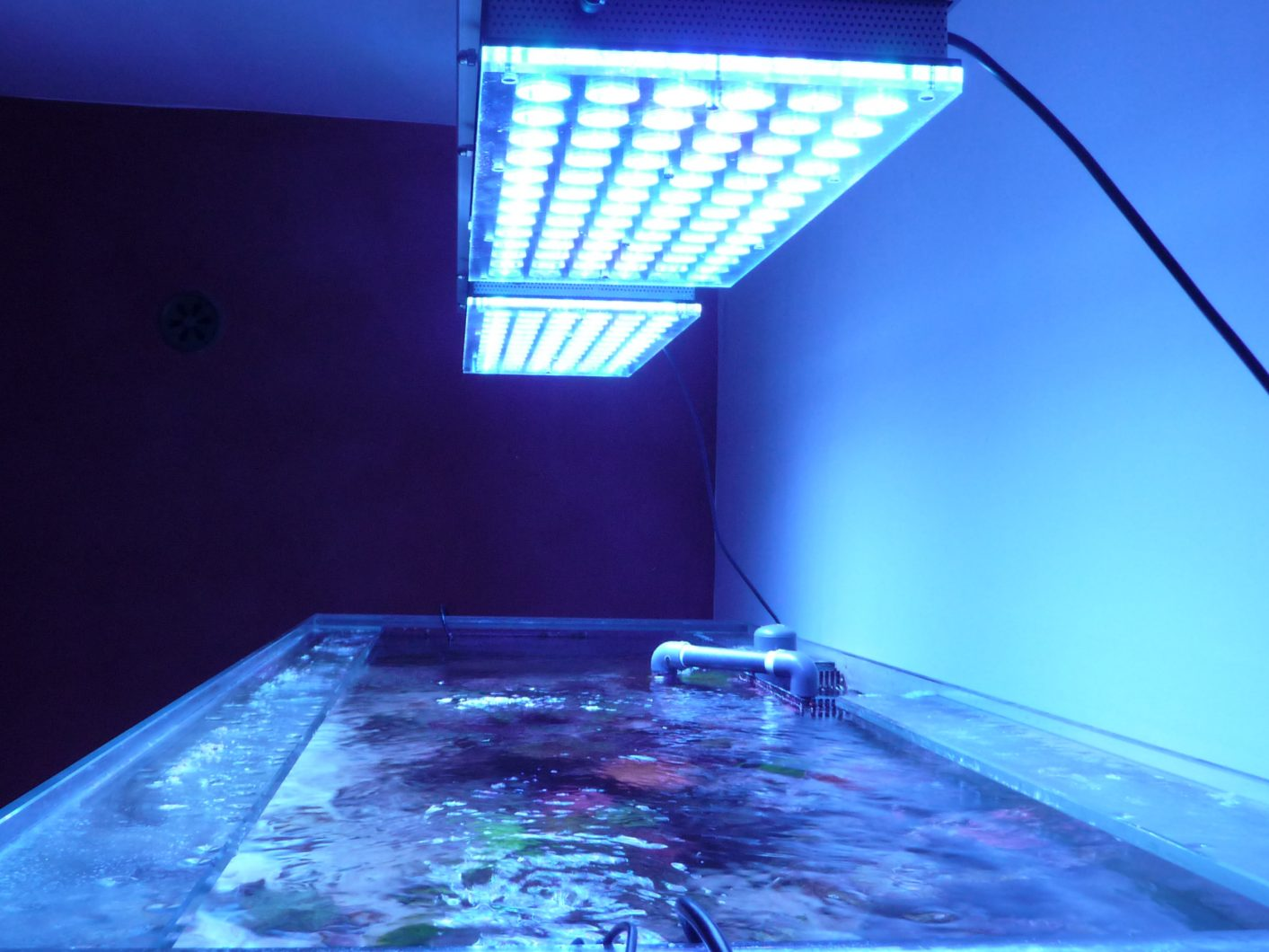 Orphek_atlantik_v4_led_lighting