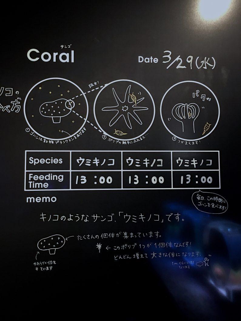 Orphek Reef Tour in Japan – Sumida Aquarium in Tokyo – Reef – part III.
