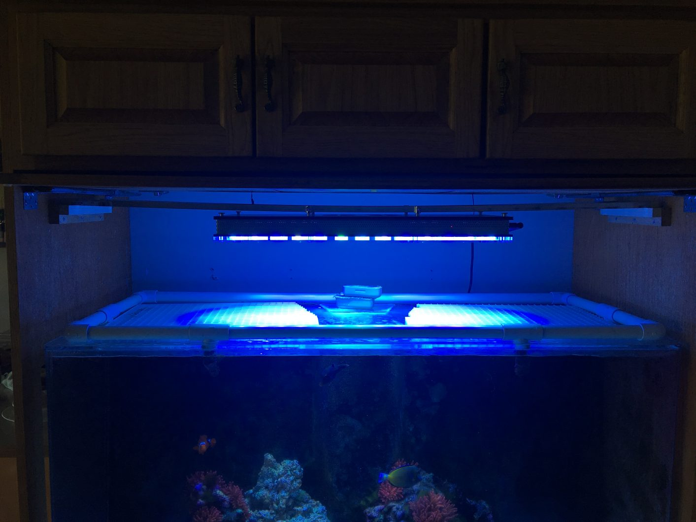 atlantik-v4-reef-aquarium-led-lighting
