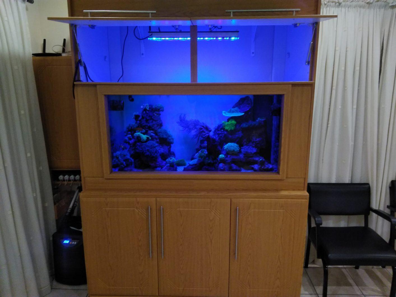 aquarium in cabinet