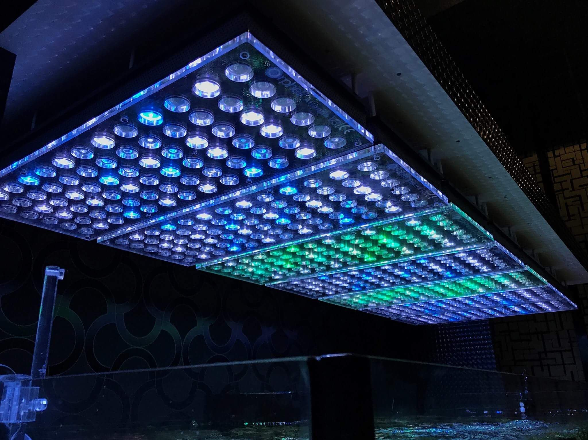 -Rif aquarium LED-light-Orphek-V4