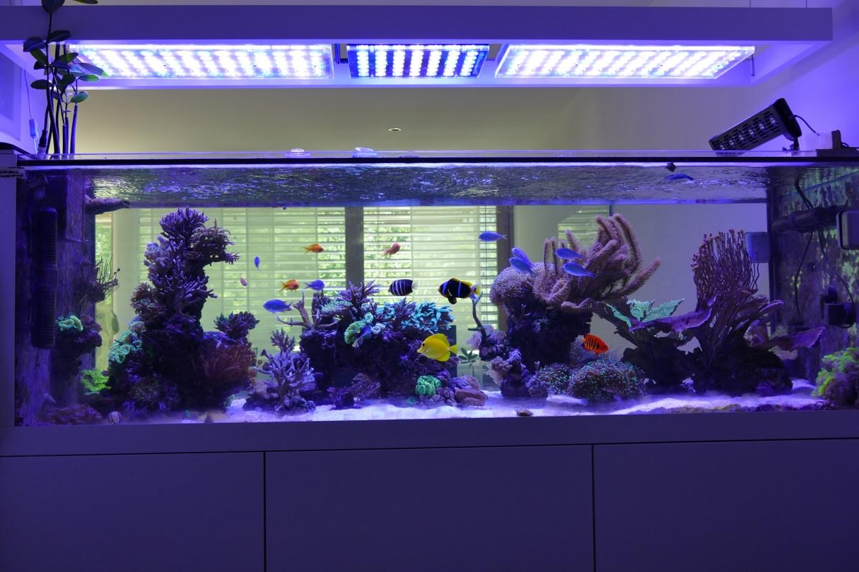 Led_aquarium_light