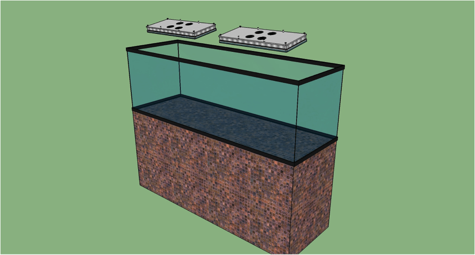 Quali luci per acquari led ho scelto per il mio acquario